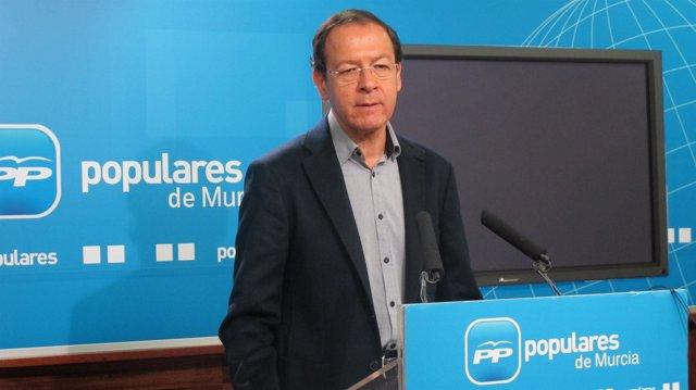 El secretario general del PP en la Región de Murcia, Miguel Ángel Cámara