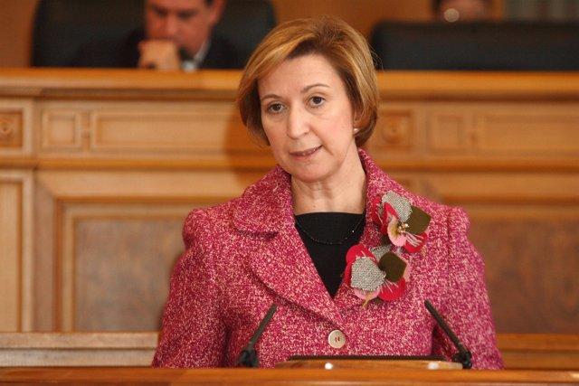 La vicepresidenta María Luisa Araújo