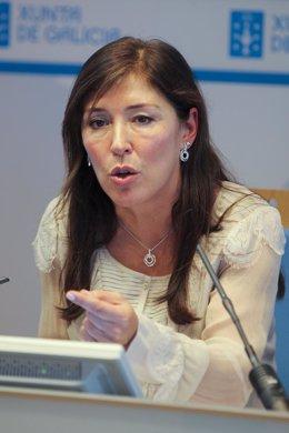 A conselleira de Traballo e Benestar, Beatriz Mato