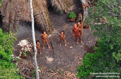 Perú.- Survival celebra que las autoridades de Perú colaboren con Brasil en la protección de indígenas aislados