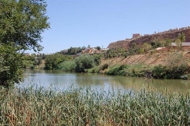 Riberas del río Guadaíra