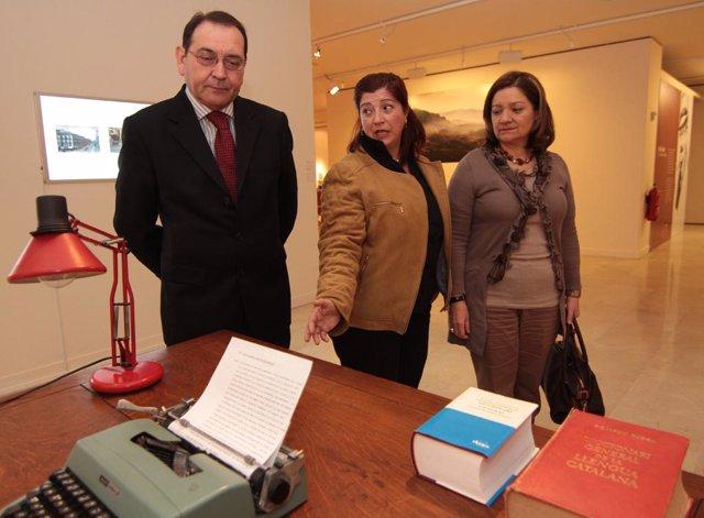 Exposición sobre Enric Valor