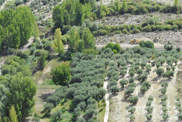 Imagen de la zona de obras del trasvase del río Castril (Granada)