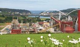 Planta de Ence, en Navia.