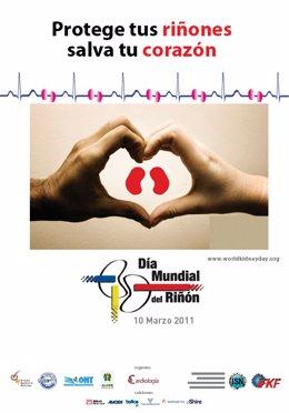 Folletos Y Toma De Tensión Arterial El Día Mundial Del Riñón En Asturias