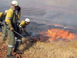 Incendio controlado en un campo de trigo.