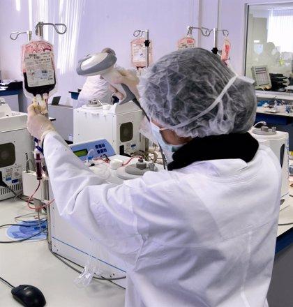 Una niña andaluza supera un cáncer de cerebro tras ser tratada con células madre de su propio cordón umbilical