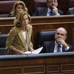 La ministra de Economía, Elena Salgado, en el Congreso