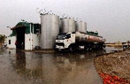 Sector lácteo