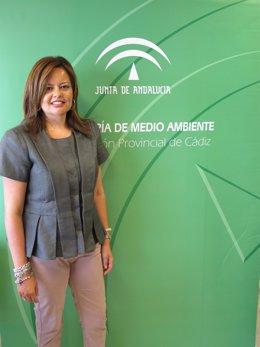 La delegada provincial de Medio Ambiente de la Junta en Cádiz, Silvia López,
