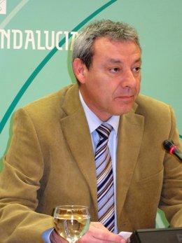 El consejero de Educación, Francisco Álvarez de la Chica, en rueda de prensa hoy