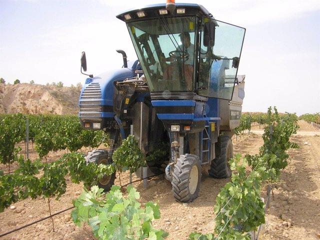 Tractor en viñedos