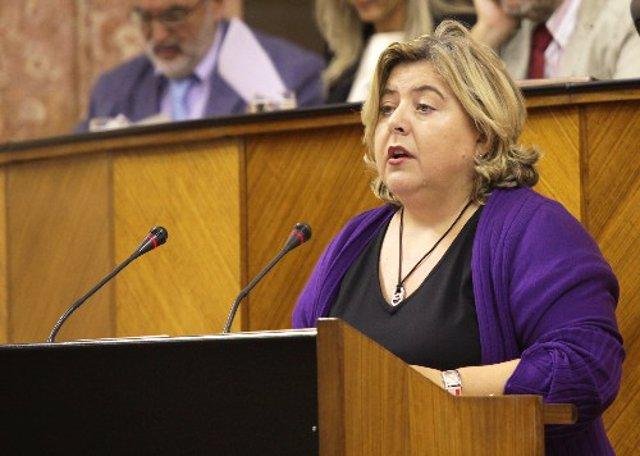 La consejera de Agricultura y Pesca, Clara Aguilera