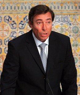 Sr. D. Mario Flores Lanuza