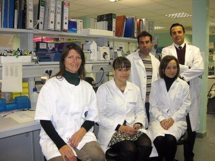 Investigadores de EEUU se suman al grupo malagueño que estudia el desarrollo una nueva terapia celular para la diabetes
