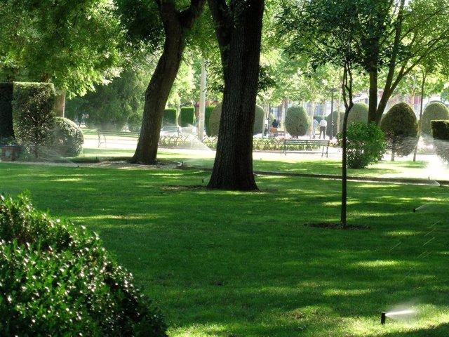 Parque en Ciudad Real