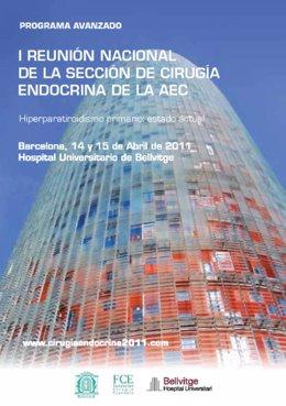 Cartel De La I Reunión Nacional De La Sección De Cirugía Endocrina De La AECC
