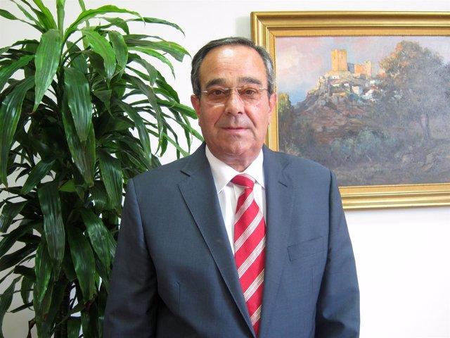 El Presidente De Martín Casillas, Francisco Martín González