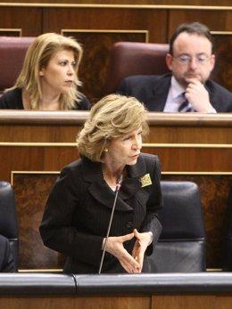 Salgado, En El Pleno Del Congreso