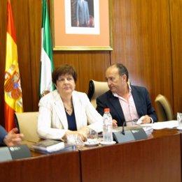 La Consejera De Obras Públicas Y Vivienda, Josefina Cruz