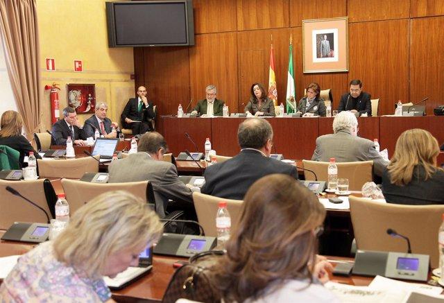 Mar Moreno Comparece En La Comisión De Presidencia Del Parlamento