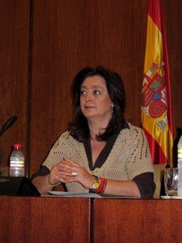 La Consejera De Presidencia, Mar Moreno, Hoy En Comisión Parlamentaria