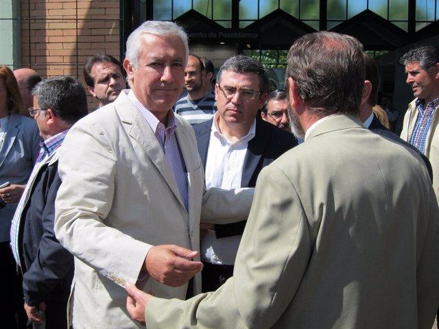 El Presidente Del PP-A, Javier Arenas, En Un Acto En Pozoblanco (Córdoba)