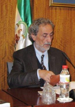 El Defensor Del Pueblo Andaluz, José Chamizo, Hoy En El Parlamento