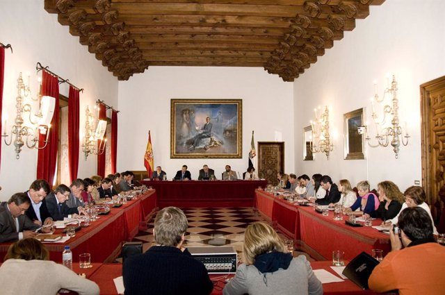 Ndp Pleno Diputación & Foto