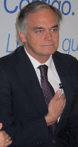Vicesecretario De Comunicación Del PP, Esteban González Pons