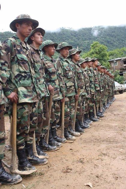 Bolivia anuncia una nueva estrategia contra el narcotráfico