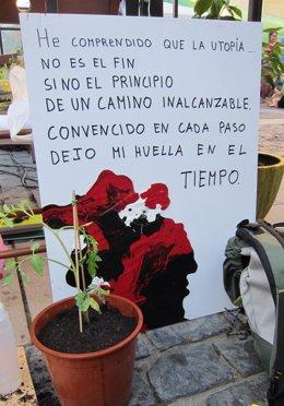 Taller-Jardín Creado Por Los 'Indignados'