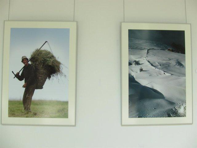 Exposición Milenio De Los Valles Pasiegos