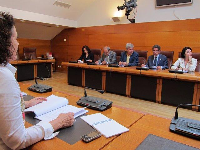 Primera Reunión Del Grupo Regionalista