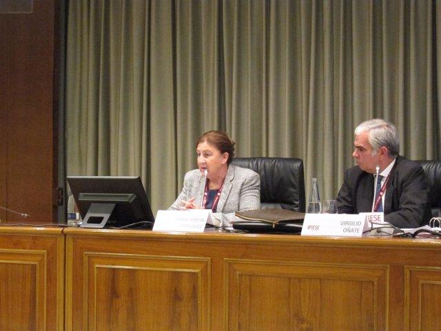 La Presidenta Del Foro Nuclear, María Teresa Domínguez