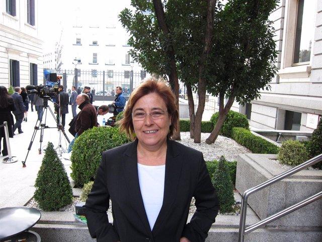 Diputada de ICV en el Congreso de los Diputados, Nuria Buenaventura