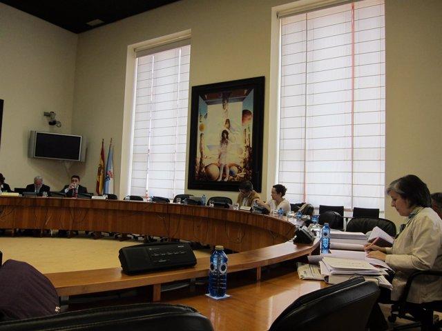 Fotos Comisión Sanidade Arrojo