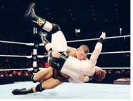 Lucha Libre Profesional