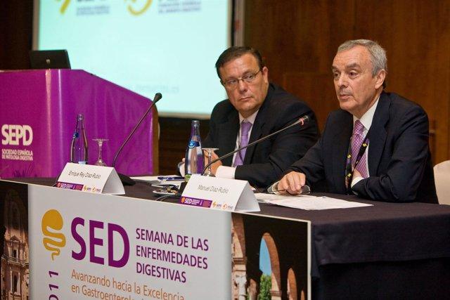 SED 2011