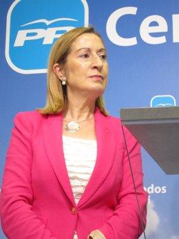 La Coordinadora De Participación Social Del PP, Ana Pastor