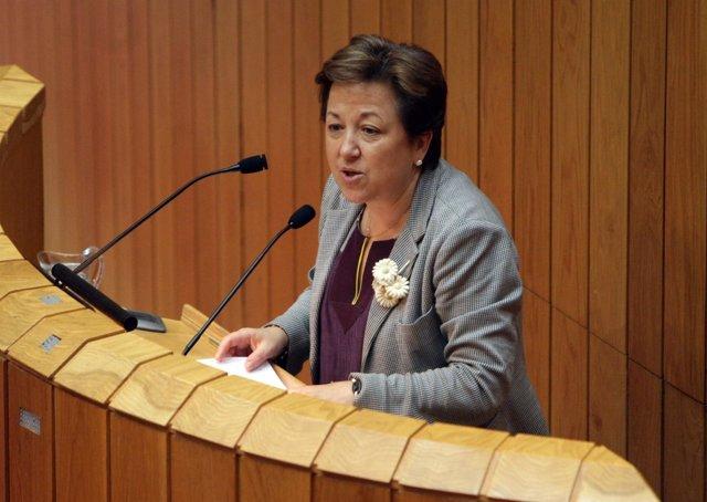 La Conselleira De Sanidade, Pilar Farjas Abadía, En El Pleno.