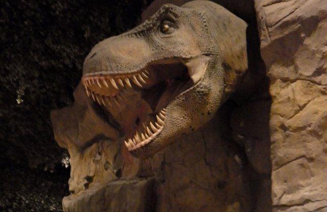 Dinosaurio. Dinópolis
