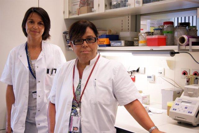 Investigación Del Vall D'hebron Institut De Recerca