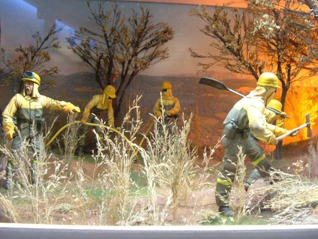 Muestra Del Equipo De Bomberos Terrestres Apagando Un Fuego