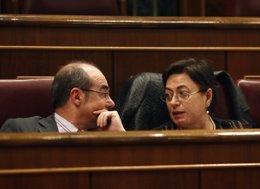 Francisco Jorquera y Olaia Fernández Davila, diputados del BNG en el Congreso