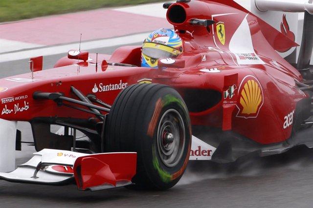 Fernando Alonso GP Turquía