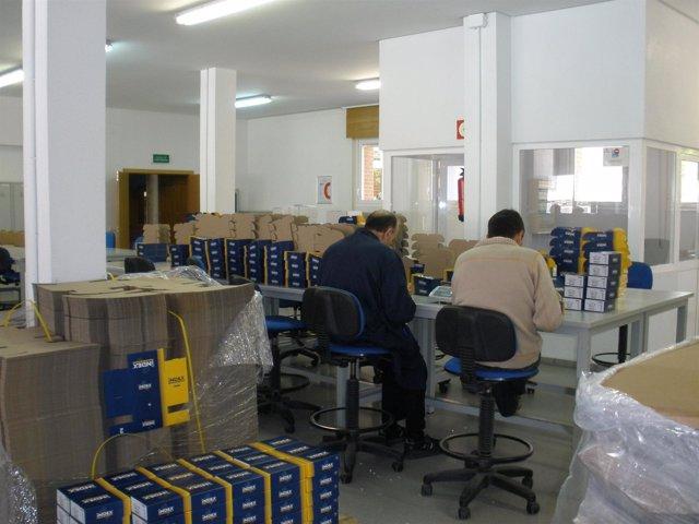 Dos Personas Trabajan En El Centro De Trabajo De ARFES