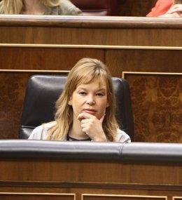 Leire Pajín, En El Banco Azul Del Congreso