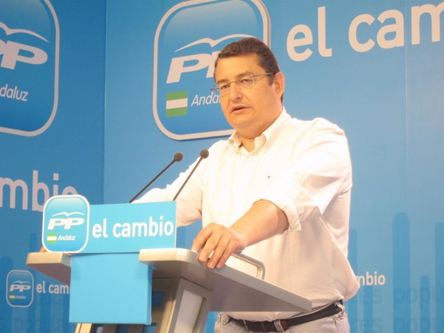 Rueda De Prena Del Secretario General Del PP-A, Antonio Sanz