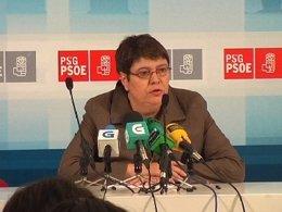 La diputada socialista Marisol Soneira